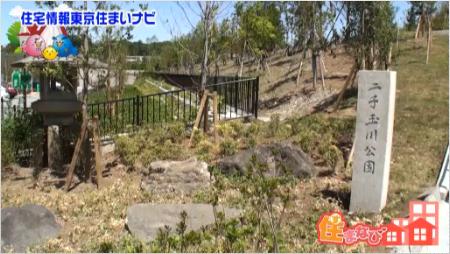 futakotamagawa-20-20-16