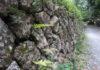 城南・城西エリアが地震に強い理由